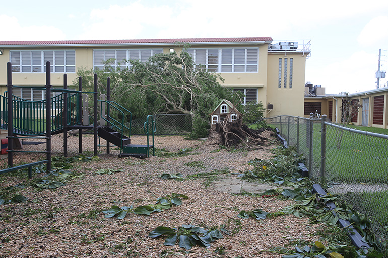One of the playgrounds at St. Rose of Lima School in Miami Shores shows damage caused by a tree falling down during Hurricane Irma. Damage from the storm in the Archdiocese of Miami was mercifully good: a lot of tree damage, some flooding but most of the structures, including those in the hardest-hit Keys, held up very well.