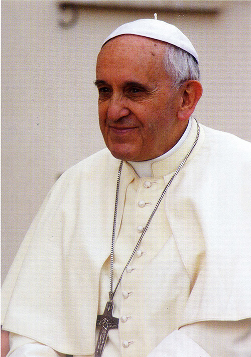 A portrait of Pope Francis taken in Vatican City on Aug. 5, 2014.