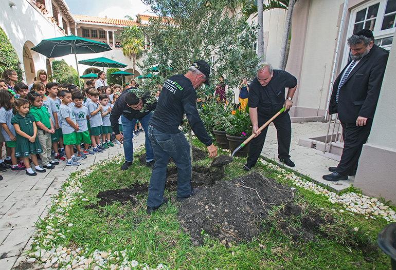 Father Roberto Cid shovels dirt into the ground containing the olive tree as Rabbi Yitzi Zweig and school students look on.
