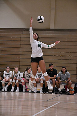 St. Brendan High captain Emily Diaz, a junior, goes for the kill during a game. The Sabres volleyball team advanced to the Region 4-7A final for the third consecutive season before losing 30-28, 26-24, 25-20 to state finalist Stuart South Fork.