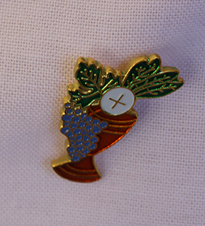 Boys wear pins featuring a chalice and host on the day they receive their first Communion at St. Anthony Church in Fort Lauderdale. The pins were given to them as gifts by the parish women's guild.