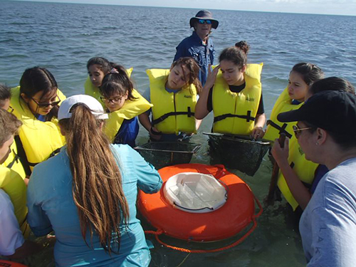 With the help of nature guides, Mother of Our Redeemer middle school students examine marine life through special viewers during their field trip to Marjory Stoneman Douglas Biscayne Nature Center in January.