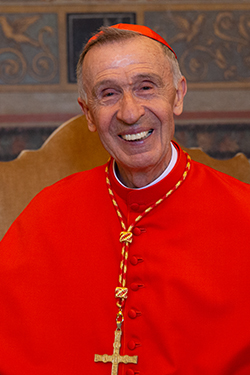 Cardinal Luis Ladaria Ferrer, prefect of the Congregation for the Doctrine of the Faith.