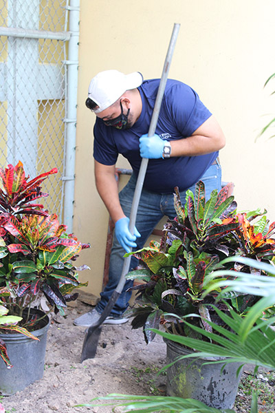 Dig deep: Anthony Perez-Florido digs to prepare a new garden area at Catholic Charities of the Archdiocese of Miami's Notre Dame Child Development Center in Little Haiti, Nov. 5, 2020. He joined other coworkers from the accounting firm Hancock, Askew and Co. in a community service project at the center.
