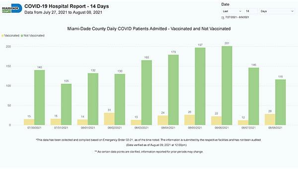 """Número de pacientes con COVID admitidos a hospitales del Condado Miami-Dade durante un periodo de 14 días, dividos por """"vacunados"""" o """"no vacunados"""". Los vacunados están en amarillo."""